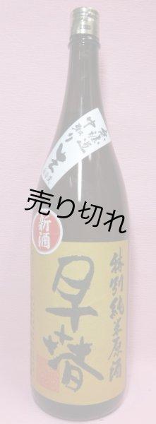 画像1: 早春 特別純米無濾過生原酒 (1)